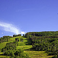 On Vail Mountain II by Madeline Ellis
