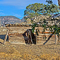 Once Upon A Time In New Mexico by Kurt Gustafson