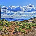 One Desert Drive by S R Longstroth
