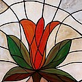 One Red Tulip by Cynthia Amaral