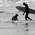One Surfer And His Dog by Brian Roscorla