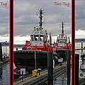 One Tug Two Tug Three Tug More by Randy Harris