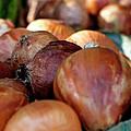 Onions At A Roadside Market by Toni Hopper