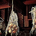 Onions Drying by Chris Berry