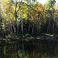 Ontario Colors by Dottie Gillespie