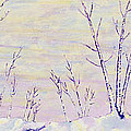 Opalescent Winter by Sharon Gill