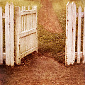 Open Gate To Cottage by Jill Battaglia