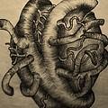 Open Heart by Nancy Mitchell