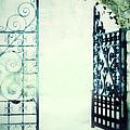 Open Iron Gate In Fog by Jill Battaglia
