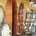 Open Vineyard Door by Peggy  McDonald