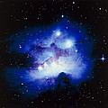 Optical Image Of The Nebula Ngc 1977 In Orion by Celestial Image Co.