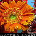 Orange Floral by Clayton Bruster