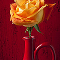 Orange Rose In Red Pitcher by Garry Gay