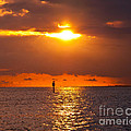 Orange Sky by Stephen Whalen