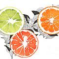 Orange by Viki Vehnovsky