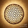 Orb Web by Tony Cordoza