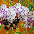 Orchids With Speckled Butterfly by Garry Gay