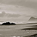 Oregon Coast by Eric Tressler