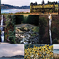 Oregon Collage From Sept 11 Pics by Maureen E Ritter