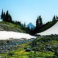 Oregon Hike by C Sitton