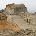 Oregon Sand Dunes by Athena Mckinzie