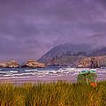 Oregon Seascape by David Patterson