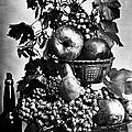 Oregon: Wine & Grapes by Granger