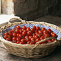 Organic Cherry Tomatoes by Sheila Terry