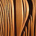 Organic Mahogany Shapes by Charles Dancik