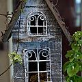 Ornamental Bird House by Douglas Barnett