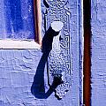 Ornate Door Handle by Marilyn Hunt