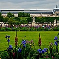 Orsay From The Tuileries by Eric Tressler