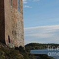 Oslo Castle And Harbor by Carol Groenen