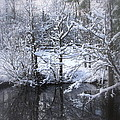 Our Pond In The Snow by Travis Truelove
