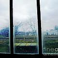 Out The Back Window Of The Delta Blues Museum Clarksdale Ms by Lizi Beard-Ward
