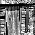 Outhouse 5 by Susan Kinney