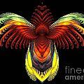 Outstreched Wings by Klara Acel
