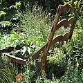 Overgrown Chair by Michele Nelson