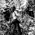 Overgrown Windpump by Robert Frederick