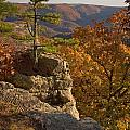 Overlook At Cecil Hollow by Michael Dougherty