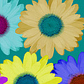 Oversize Daisies by Ruth Palmer