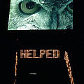 Owl Eye Zipper Sign Times Square by Tom Wurl