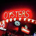 Oysters by Lizi Beard-Ward