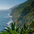 Pacific Coast Shoreline IIi by Steven Ainsworth