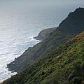 Pacific Coast Shoreline Iv by Steven Ainsworth