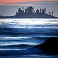 Pacific Rim National Park 16 by Terry Elniski