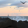 Pacific Sailing by Artistic Photos