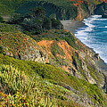 Pacific Shoreline Vii by Steven Ainsworth