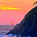Pacific Sunset by Bob and Nadine Johnston