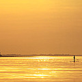 Paddle Boarder At Dawn by Stephanie McDowell